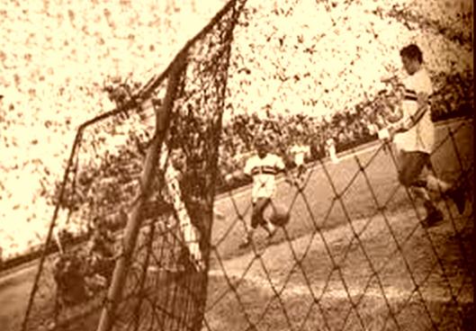 imagem171